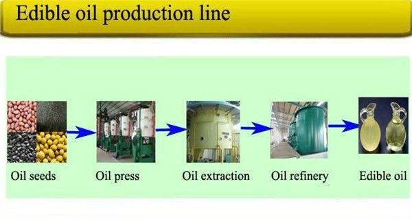 Organic Cold Pressed Edible Oil   Dhanyam